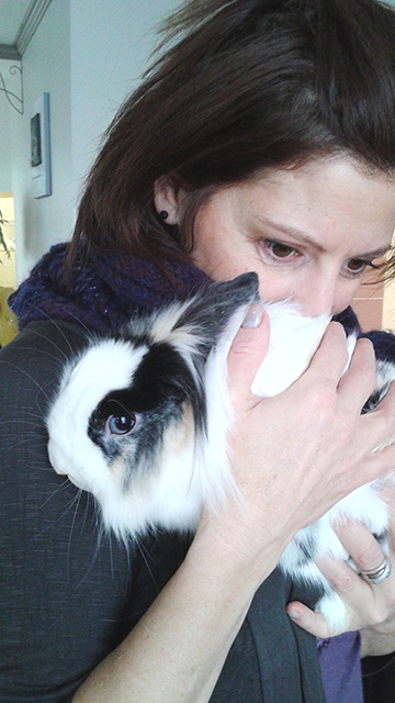 lapin-virginie-calin